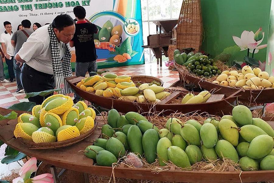 Trái cây xuất khẩu sang Trung Quốc